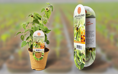 Sustainable growing pot with jea plant label nominated for award!